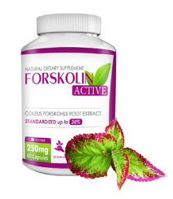 Forskolin Active Guía Completa 2018 - en mercadona, herbolarios, opiniones, foro, precio, comprar, farmacia